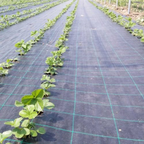 Folie profesionala Agrotextil 3210NE Agritela Nera Depozitul de seminte