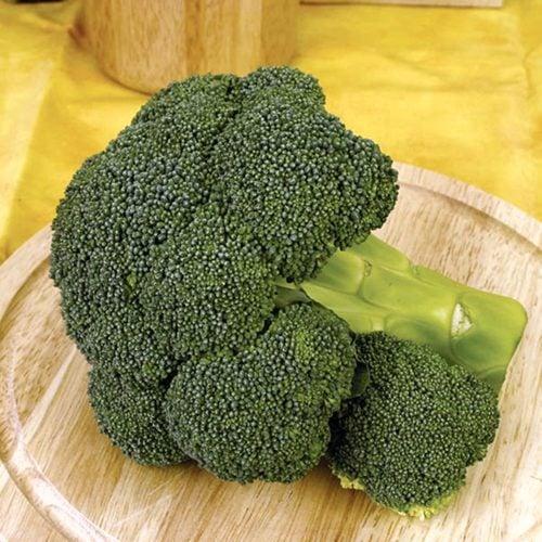 Ironman-f1 seminte broccoli Seminis