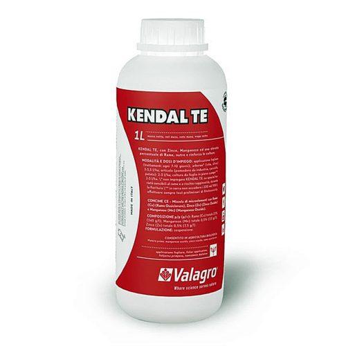 Depozitul de Seminte Kendal TE