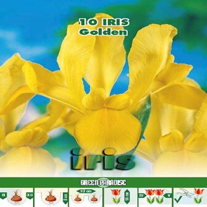 Depozitul de Seminte Iris Golden