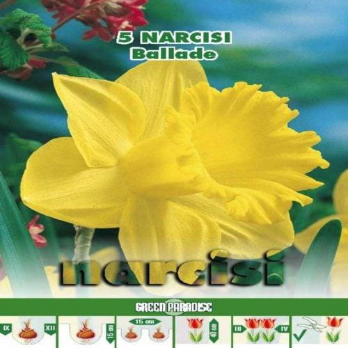 Narcise Ballade