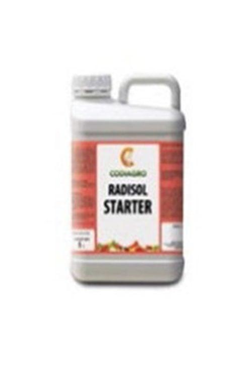radisol starter