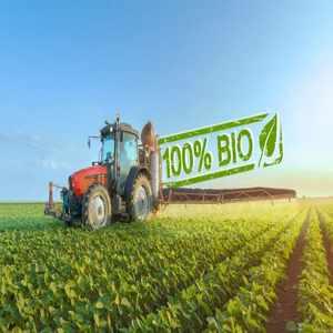 Insecticide, fungicide si tratament samanta BIO